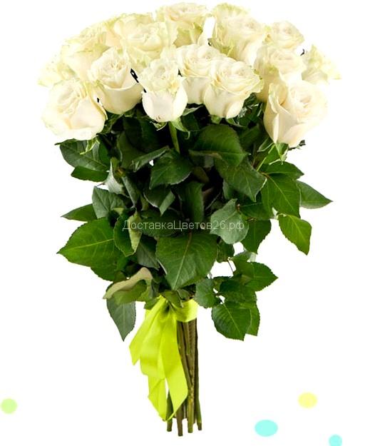 Элитные высокие (80-90 см) белые импортные розы