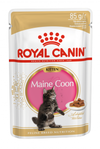 Роял канин Киттен Мэйн Кун соус пауч (Kitten Maine Coon) 85гр
