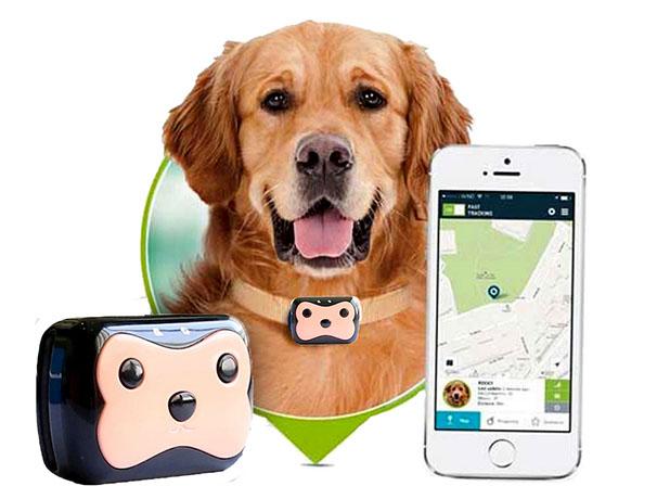 Трекер Для Животных Pet Gps Tracker