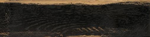 Carbone brown PG 01
