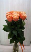 11 роз - Кохала (60 см)