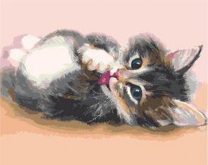 Картина по номерам «Милый котенок» 40x50 см