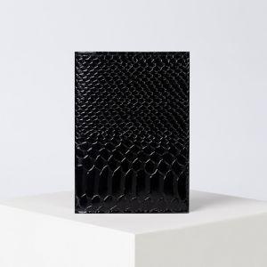 Обложка для автодокументов, питон, цвет чёрный
