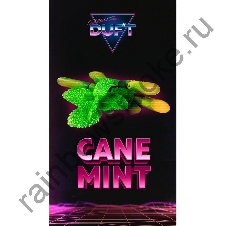 Duft 100 гр - Cane Mint (Тростниковая Мята)