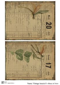 Vintage insects 8