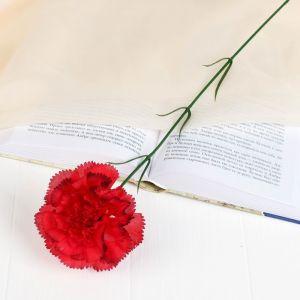 """Цветок искусственный """"Гвоздика с кантом"""""""