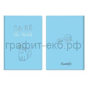 Книжка зап.Феникс+ А6+ ПВХ карманы для визиток голубой 60л. линия 52775