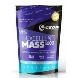 GEON EXCELLENT MASS 5000 0,9 КГ
