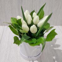 коробочка с 11 тюльпанами