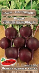 Редис Чёрный шоколад F1 (Премиум сидс)