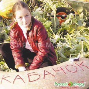 Кабачок зимний Русский Размер (Русский Огород)