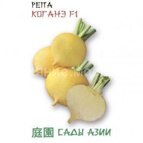 Репа Коганэ F1 (Сады Азии)