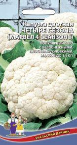 Капуста цветная Четыре сезона (Уральский Дачник)