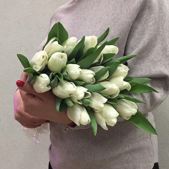 15 тюльпанов (любой цвет)