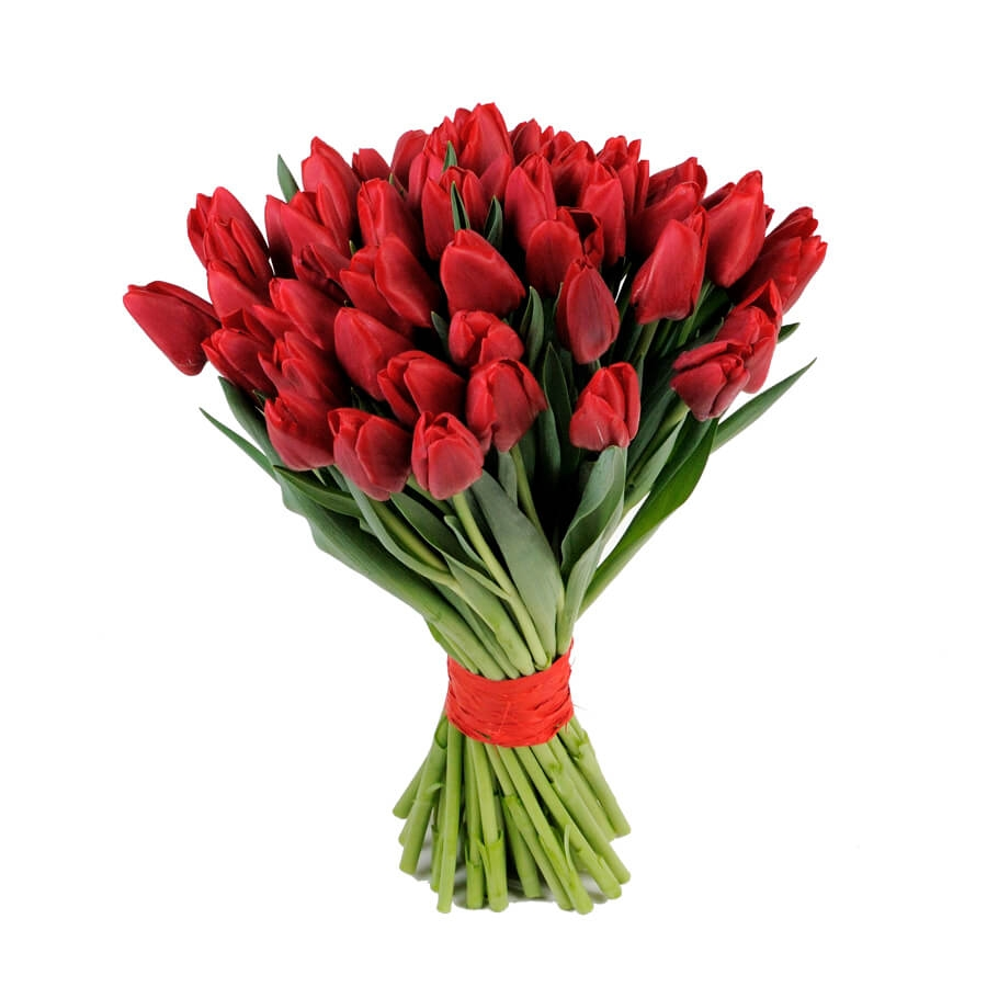 Тюльпаны красные (от 15 шт)