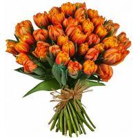 Тюльпаны оранжевые (от 15 шт)