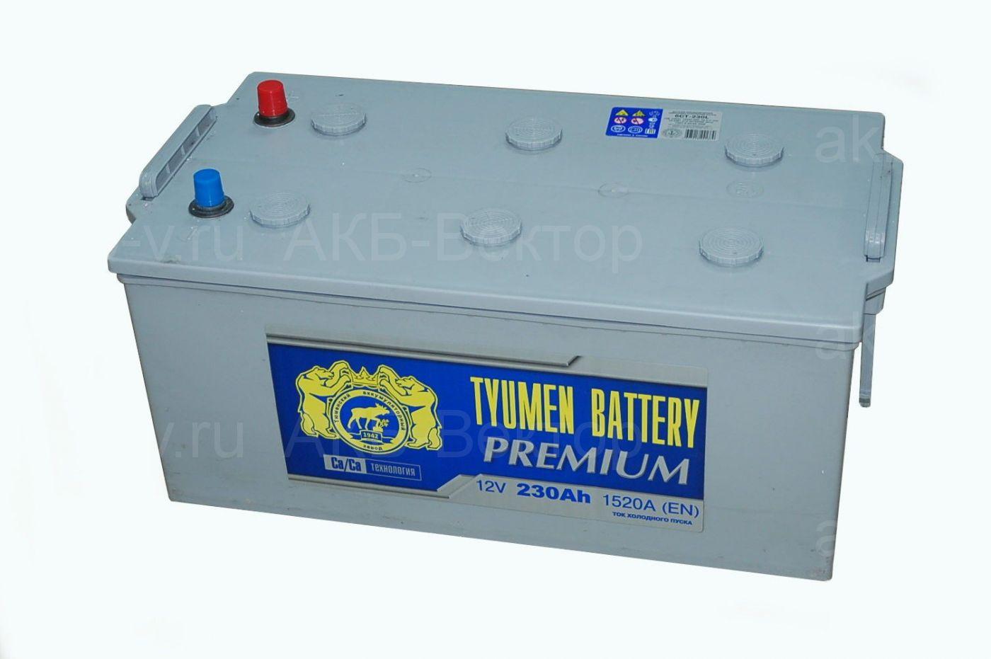 Tyumen Premium 230Ач 1520А(EN)
