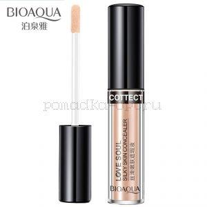 Консилер для особи BioAqua Silky Skin Concealer, тон Ivory, тон 7