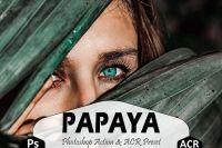 [matttestudio] Papaya Photoshop Actions And ACR Presets, Green Ps Presets
