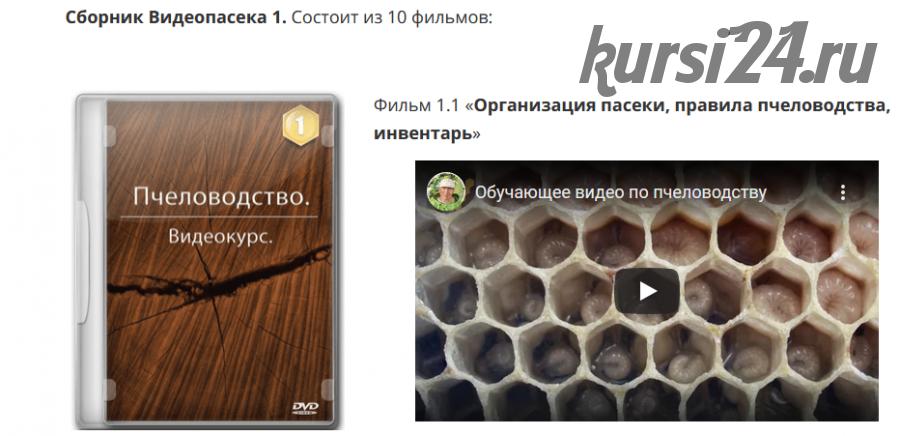 Пчеловодство: Сборник Видеопасека 1 (Николай Осташов)