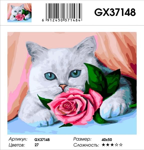 Картина по номерам на подрамнике GХ37148