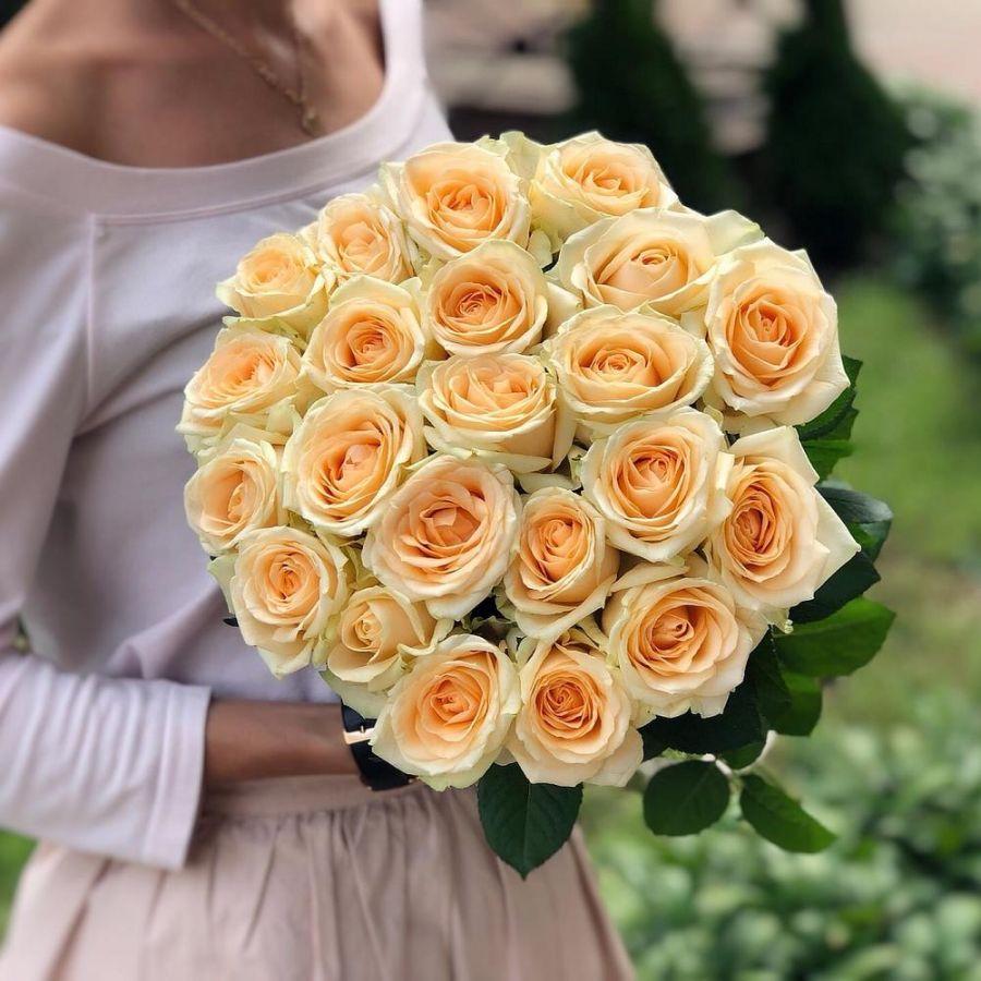 Кремовые розы 60 см