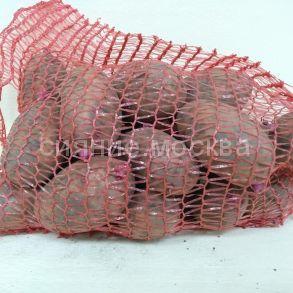 Картофель Женечка элита, 2 кг