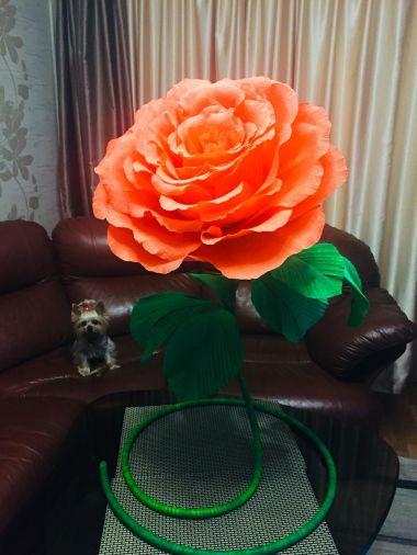 Красная ростовая роза на скрученной основе и зеленом стебле