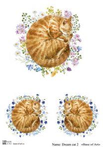 Dream cat 2