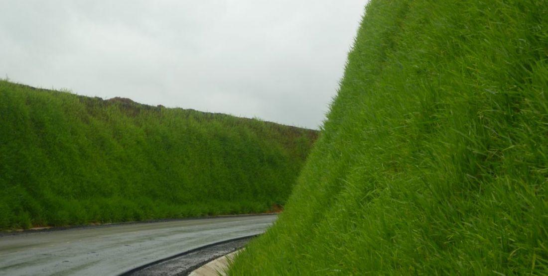 гидропосев газона 1 м2