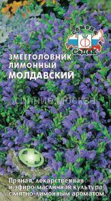 Змееголовник лимонный Молдавский (СеДек)