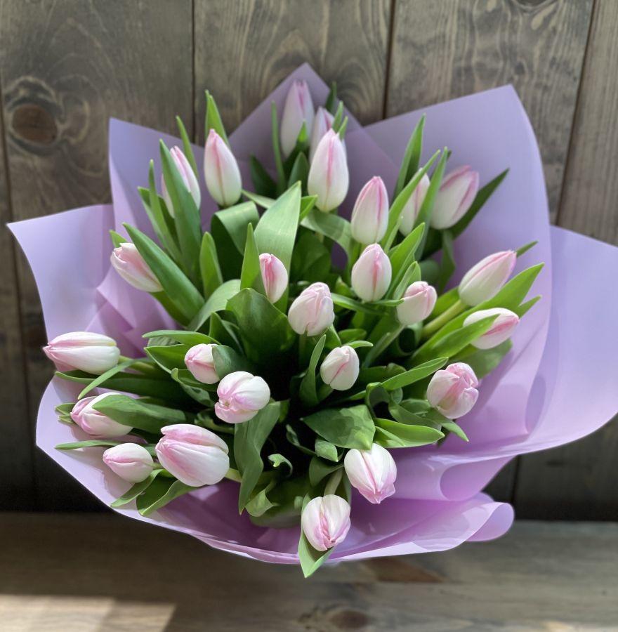 25 розовых тюльпанов в красивой упаковке