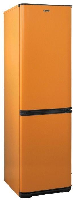 Холодильник Бирюса T649 Оранжевый