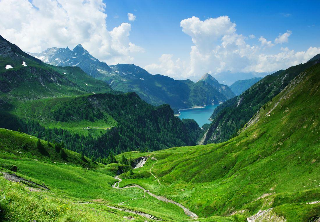 Зелёные холмы 10-69