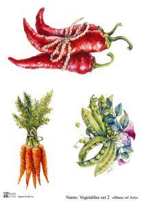 Vegetables set 2