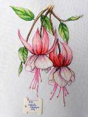 """Fuchsia"". Digital cross stitch pattern."