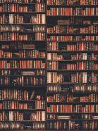 """Фон стена """"Bookold"""" 2х1.5м"""