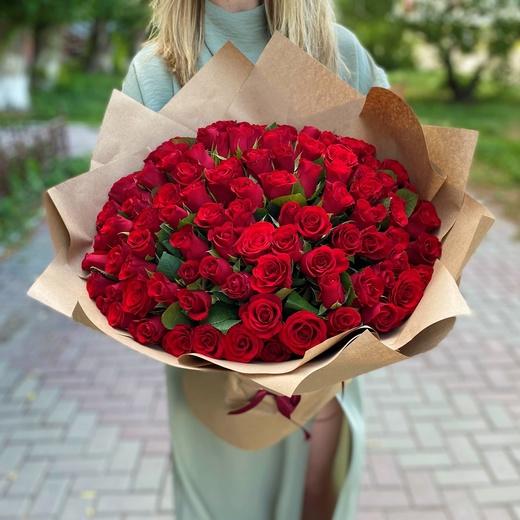 101 красная роза в упаковке (40см)