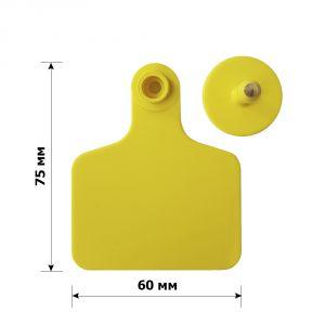 Бирка ушная 75*60 мм