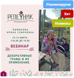 [Репейник] Декоративные травы и их применение (Ирина Пыжикова)