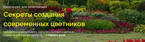 Секреты создания современных цветников (Наталья Мягкова)