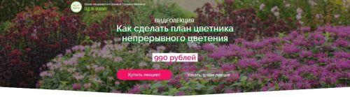 Как сделать план цветника непрерывного цветения (Наталья Мягкова)
