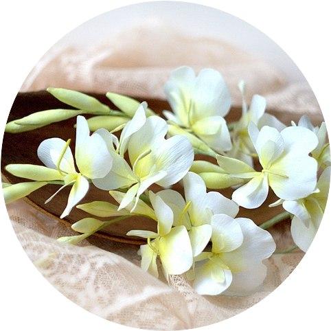 Видео мастер-класс Имбирная лилия (Тропические цветы) (Алена Семенова)