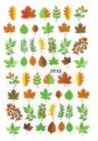 Слайдер дизайн SP.15 листья