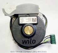 Электродвигатели для насосов Wilo