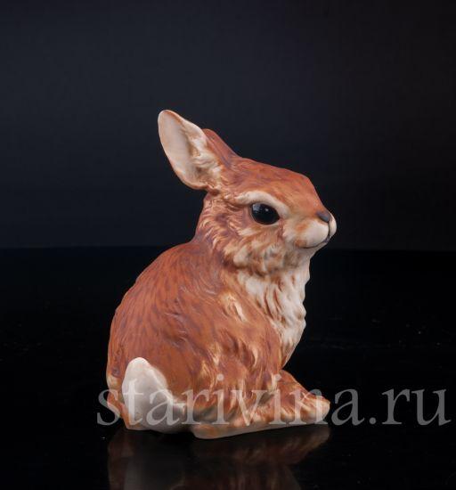Изображение Кролик, Kaiser, Германия, до 1990 года.