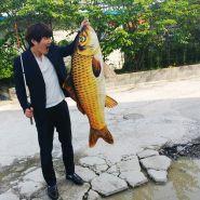 Появление РЫБЫ (большая) Appearing Fish large