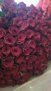 Роза 60 см. 25 шт.