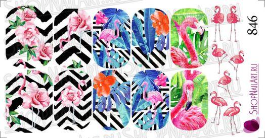 Слайдер дизайн 846 - Фламинго