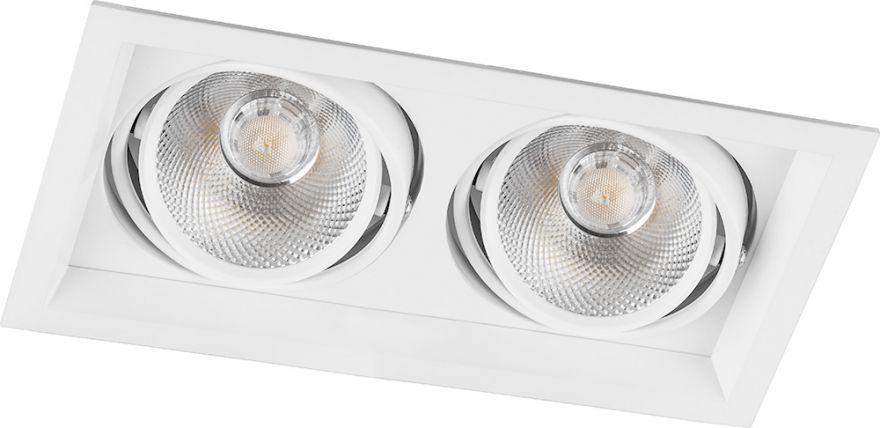 Встраиваемый светильник Feron AL202 2x12W